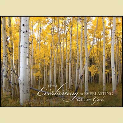 Aspen Yellow Forest – Christian Wall Art